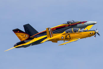 156120 - Canada - Air Force Beechcraft T-6 Texan II