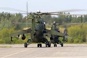 Poland - Army 456 image