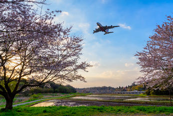 A6-EEQ - - Airport Overview - Airport Overview - Photography Location