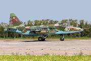 40 - Belarus - Air Force Sukhoi Su-25 aircraft