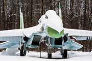 92 - Russia - Air Force Sukhoi Su-27UB aircraft