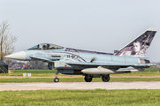 31+31 - Germany - Air Force Eurofighter Typhoon S aircraft