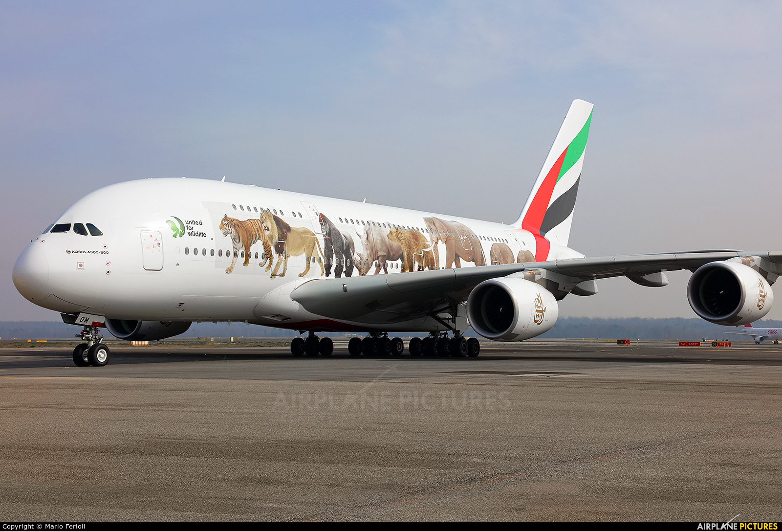 Emirates Airlines A6-EOM aircraft at Milan - Malpensa
