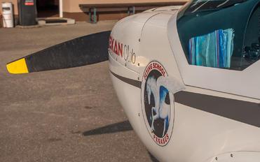 S5-PEG - Aeroklub Murska Sobota FlySynthesis Texan