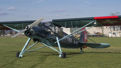 SP-YRX - Private Fieseler Fi.156 Storch