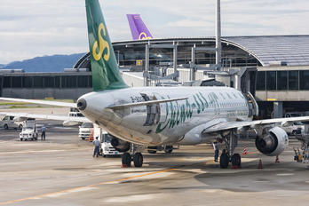 B-8012 - Spring Airlines Airbus A320