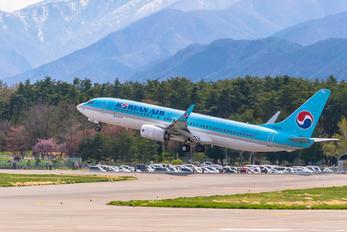 HL8243 - Korean Air Boeing 737-800