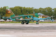 34 - Belarus - Air Force Sukhoi Su-25 aircraft