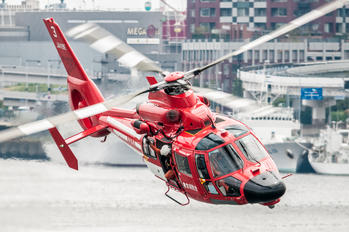JA119E - Japan - Fire and Disaster Management Agency Eurocopter AS365 Dauphin 2