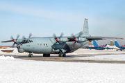 RF-95411 - Russia - Air Force Antonov An-12 (all models) aircraft