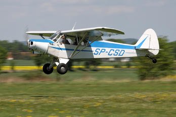SP-CSD - Private Piper PA-18 Super Cub