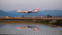 JA313J - JAL - Japan Airlines Boeing 737-800 aircraft