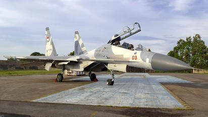 TS-3003 - Indonesia - Air Force Sukhoi Su-30MK