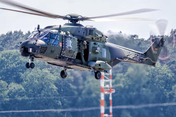 78+29 - Germany - Army NH Industries NH-90 TTH