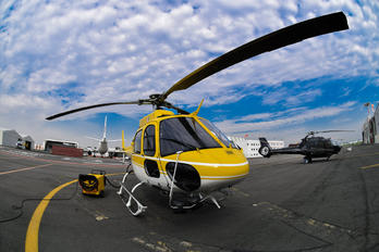XA-MIM - Private Aerospatiale AS350 Ecureuil / Squirrel