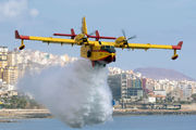 UD.13-19 / 431-19 - Spain - Air Force Canadair CL-215T aircraft