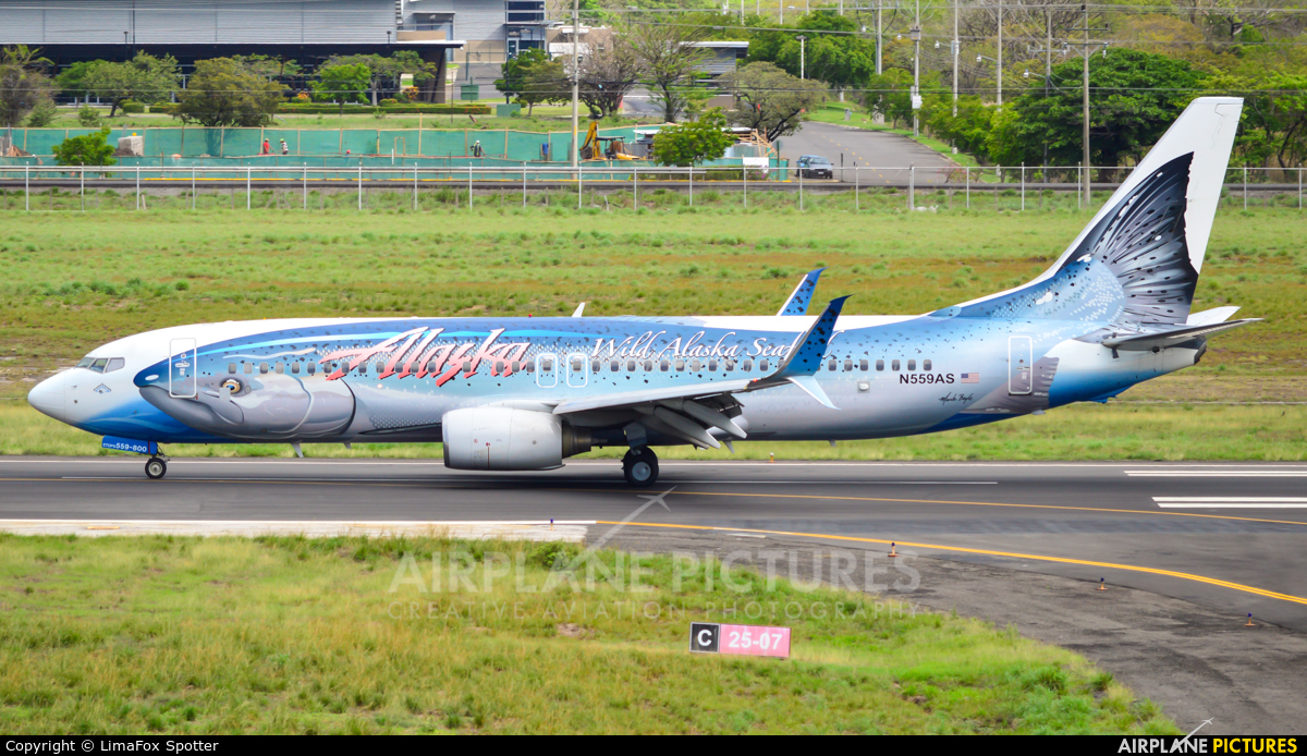Alaska Airlines N559AS aircraft at Liberia- Daniel Oduber Quirós Intl