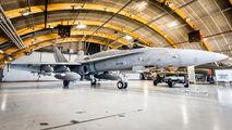 HN-403 - Finland - Air Force McDonnell Douglas F-18C Hornet aircraft