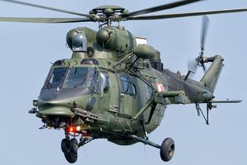 0606 - Poland - Army PZL W-3PL Głuszec