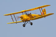 D-EDEM - Private de Havilland DH. 82 Tiger Moth aircraft
