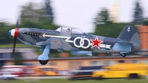 D-FLAK - Private Yakovlev Yak-3U aircraft
