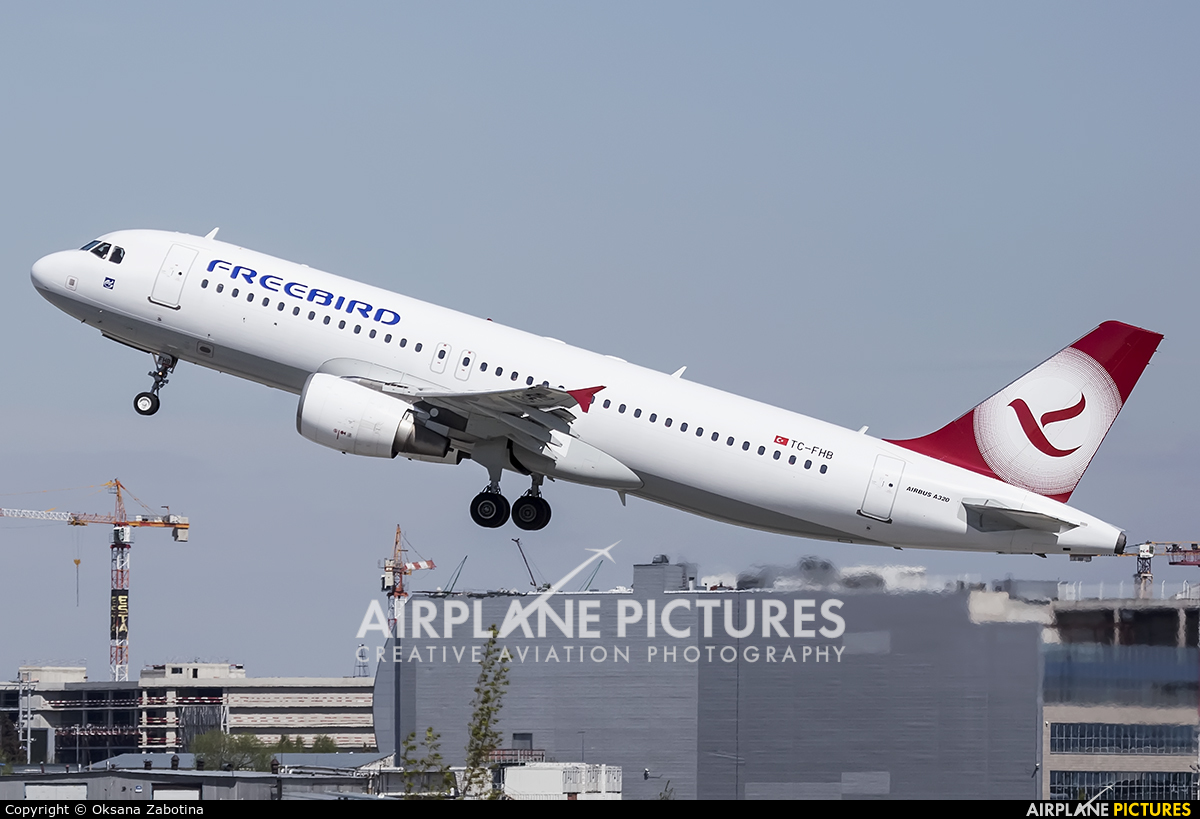 FreeBird Airlines TC-FHB aircraft at Moscow - Domodedovo