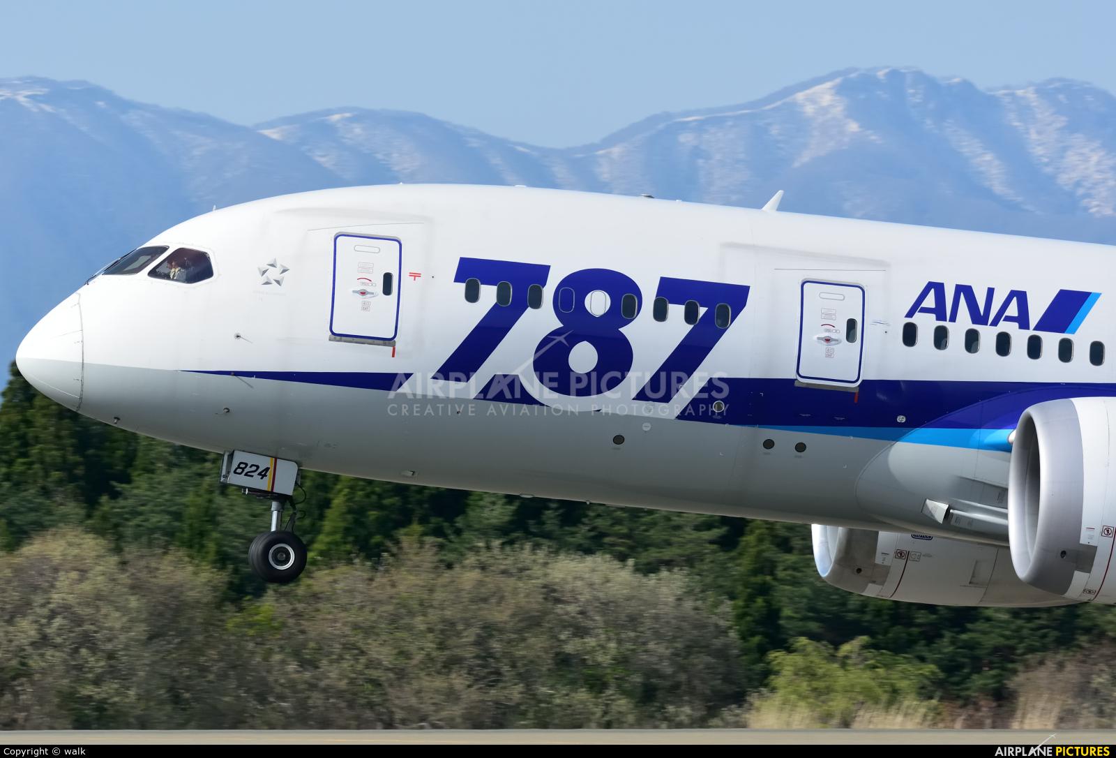ANA - All Nippon Airways JA824A aircraft at Akita