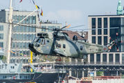 89+57 - Germany - Navy Westland Sea King Mk.41 aircraft