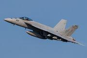 166901 - USA - Navy Boeing F/A-18E Super Hornet aircraft
