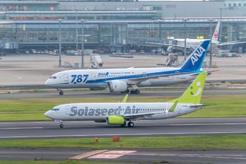 JA808X - Solaseed Air - Skynet Asia Airways Boeing 737-800