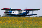 RA-33031 - Private Antonov An-2 aircraft