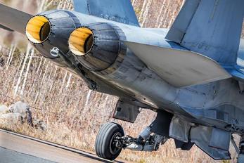 HN-442 - Finland - Air Force McDonnell Douglas F/A-18C Hornet