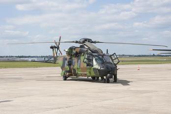 - - France - Army NH Industries NH-90 TTH