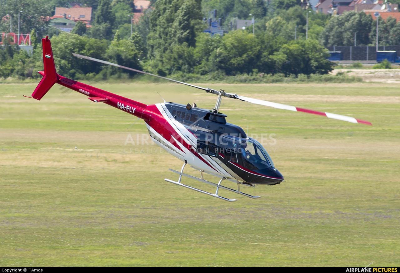 Private HA-FLY aircraft at Budaors