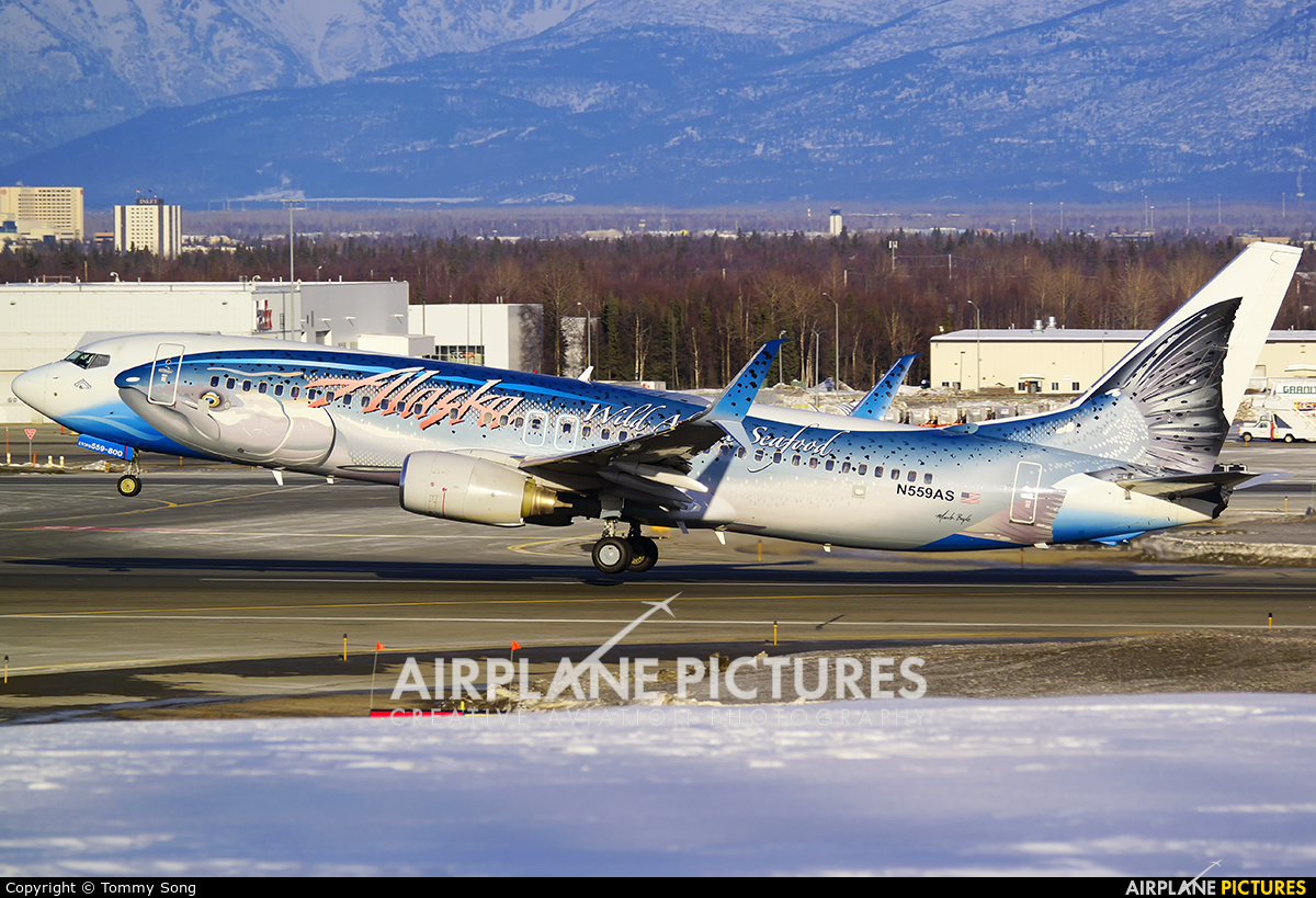 Alaska Airlines N559AS aircraft at Anchorage - Ted Stevens Intl / Kulis Air National Guard Base