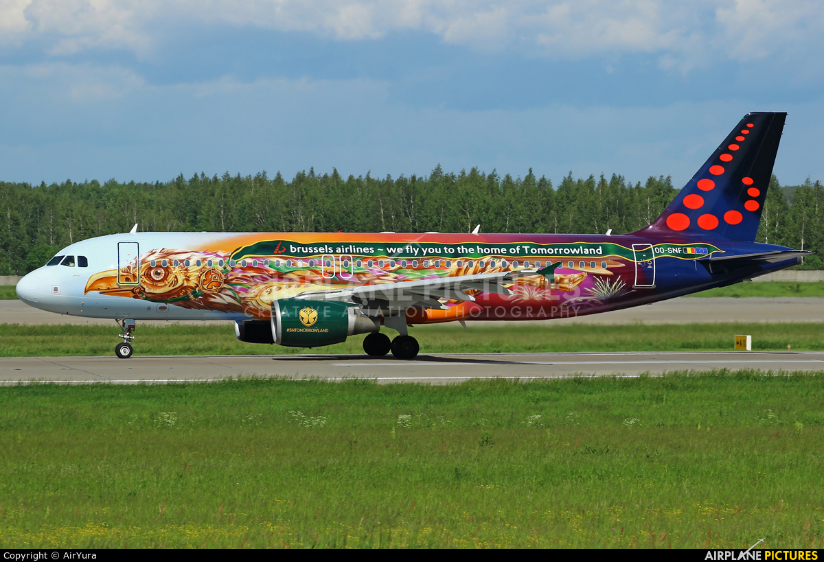 Brussels Airlines OO-SNF aircraft at Moscow - Domodedovo