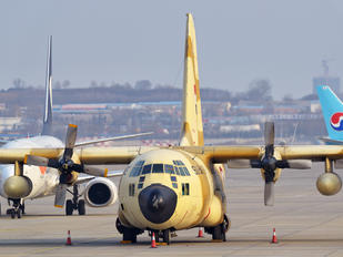 1274 - Egypt - Air Force Lockheed C-130H Hercules