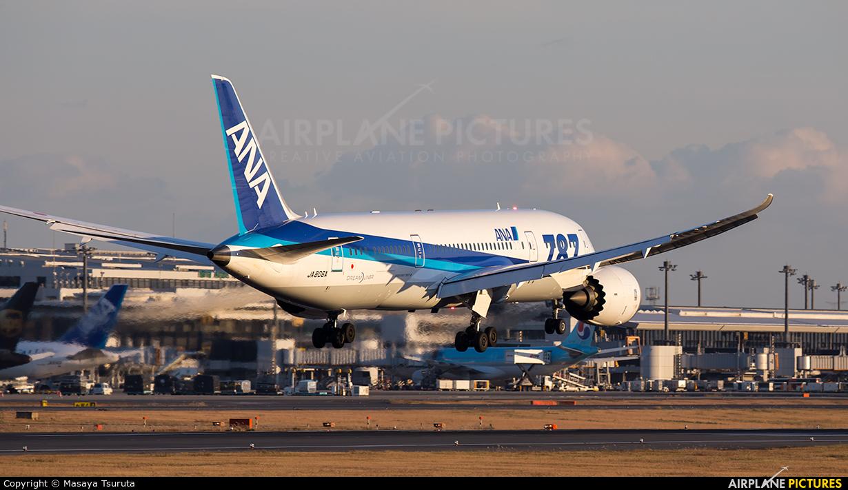 ANA - All Nippon Airways JA806A aircraft at Tokyo - Narita Intl