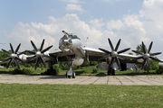 85 - Ukraine - Navy Tupolev Tu-142MZ aircraft