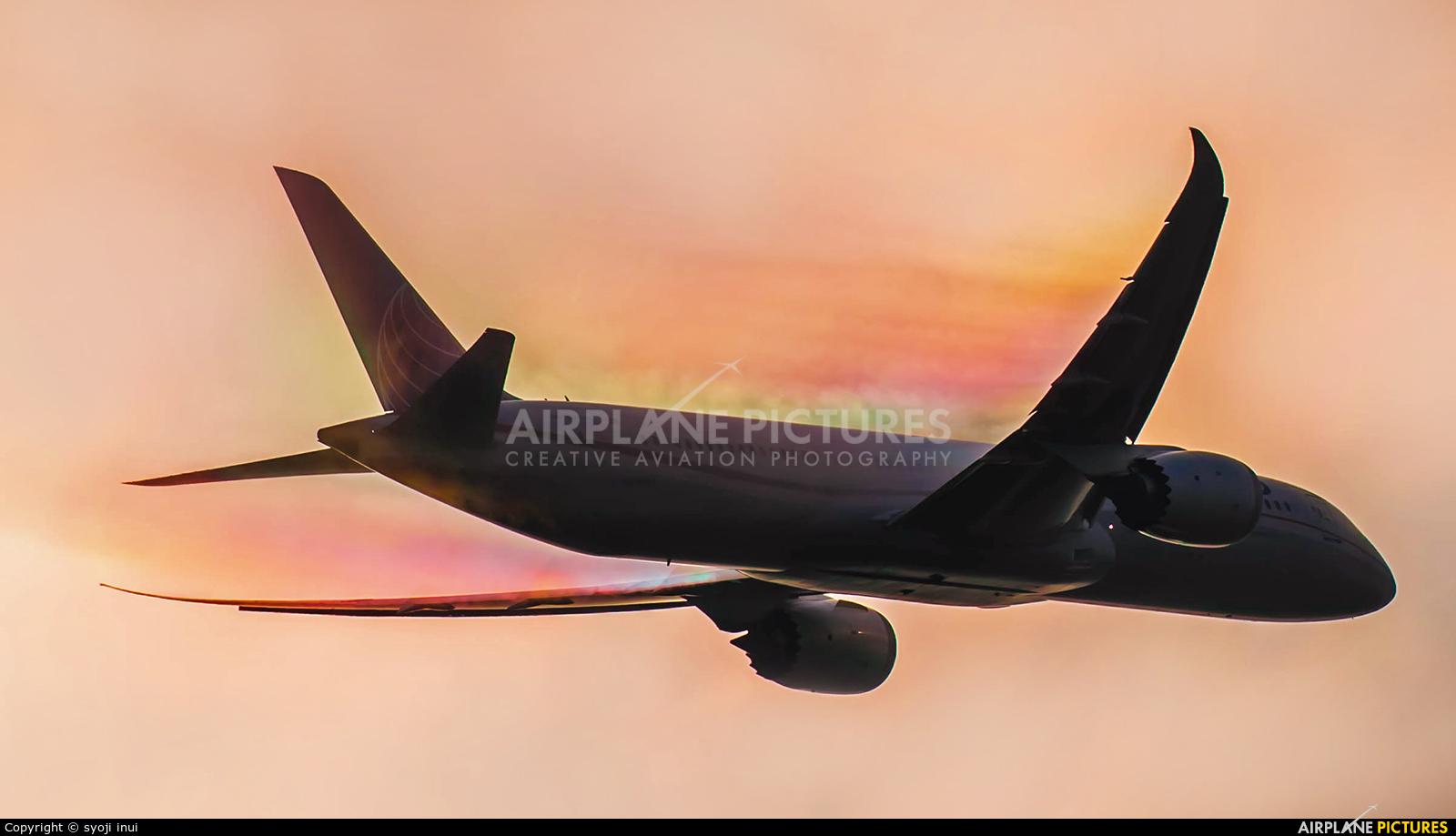 United Airlines N29961 aircraft at Tokyo - Narita Intl