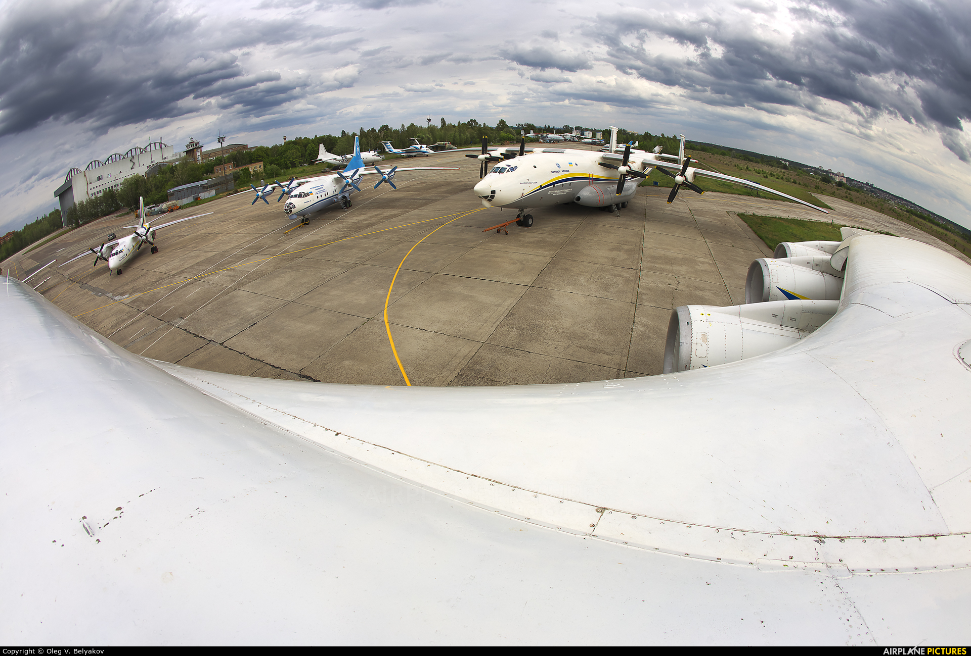 Antonov Airlines /  Design Bureau UR-82060 aircraft at Kiev - Gostomel