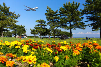 - - Airport Overview - Airport Overview - Photography Location