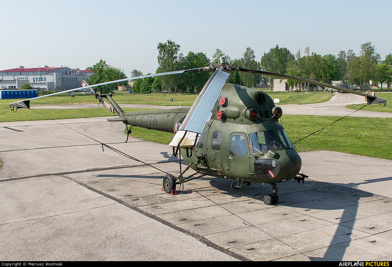 Poland - Army 7336 aircraft at Inowrocław - Latkowo