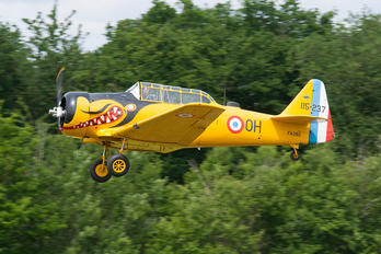 F-AZBQ - Private North American Harvard/Texan (AT-6, 16, SNJ series)