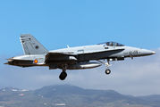 C.15-51 - Spain - Air Force McDonnell Douglas EF-18A Hornet aircraft