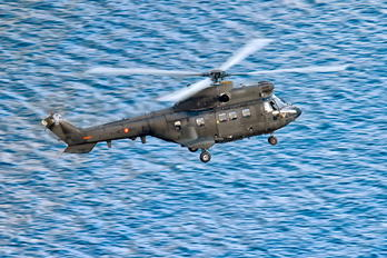 ET-510 - Spain - Air Force Eurocopter AS332 Super Puma