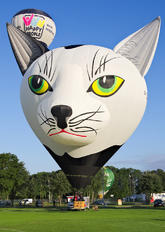 D-OCAT - Private Schroeder Fire Balloons Special shape - Kater