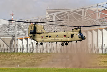 13-08135 - USA - Army Boeing CH-47F Chinook