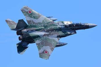 - - Japan - Air Self Defence Force Mitsubishi F-15DJ