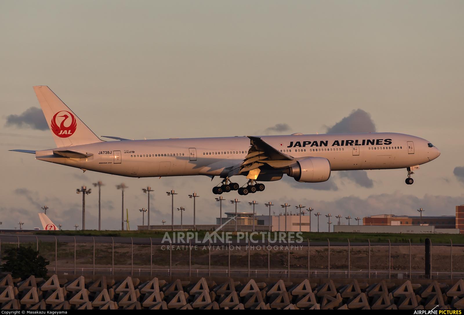 JAL - Japan Airlines JA738J aircraft at Tokyo - Haneda Intl